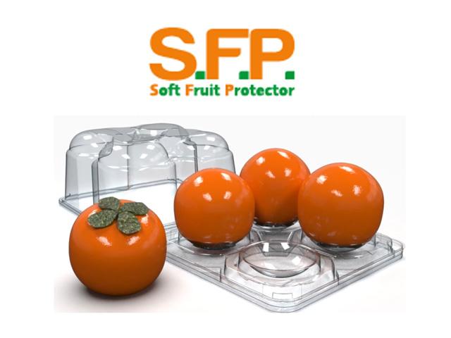 S.F.P.